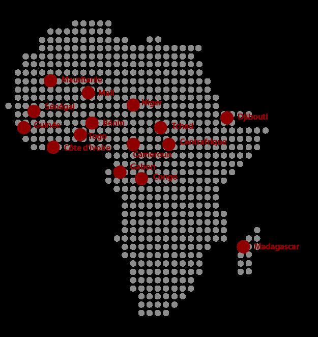 Promotion médicale Afrique